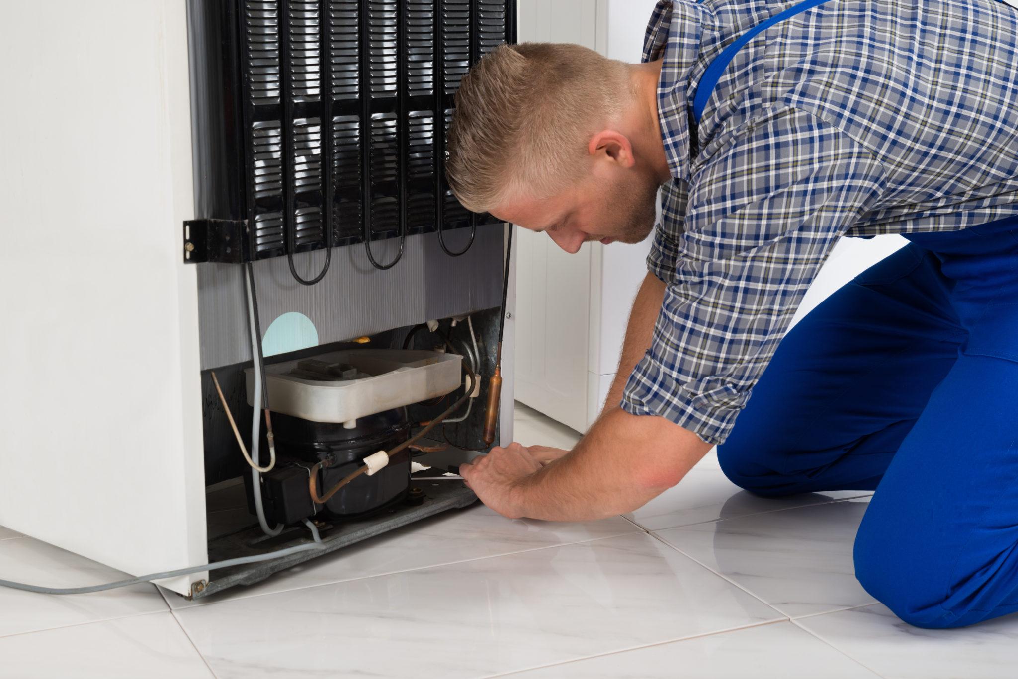 Своевременный ремонт холодильников от Техно-бот 1