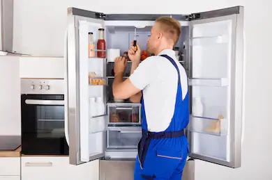 Ремонт холодильников Snaige в Полтаве